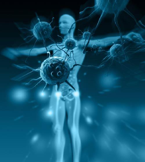 الإعجاز في خلق جهاز المناعة